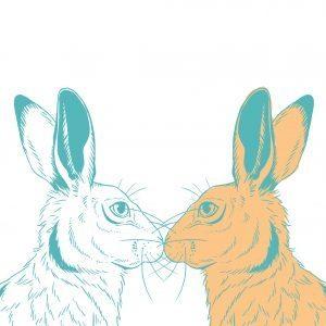 2 bunny